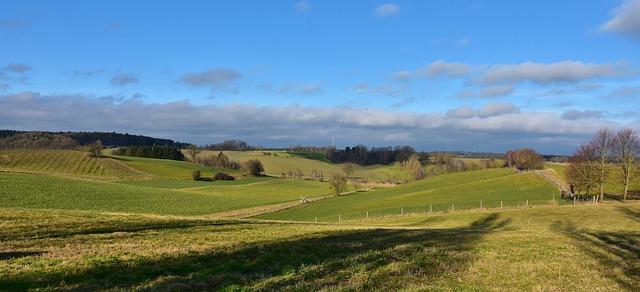 השקעה באדמה חקלאית - הזדמנות היובל או ספקולציה