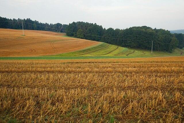 ייעוץ משפטי בעת רכישת שטח חקלאי
