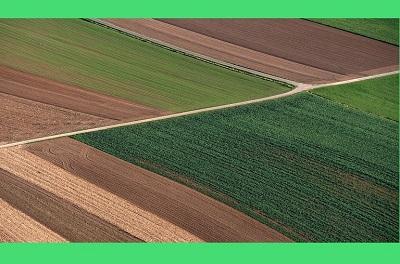 סוגים שונים של קרקעות